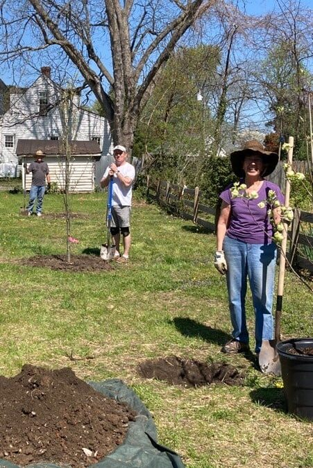 """Arbor Team"" plants trees in the new Max Silver Memorial Courtyard"